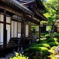 緑の庭園-大阪府河内長野市:金剛寺