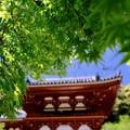 女人禁制-大阪府河内長野市:金剛寺