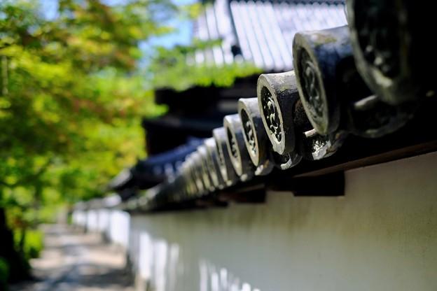 いい一日だったなぁ-大阪府河内長野市:金剛寺
