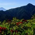 1位と2位が揃い踏み-長野県伊那市:仙丈ヶ岳
