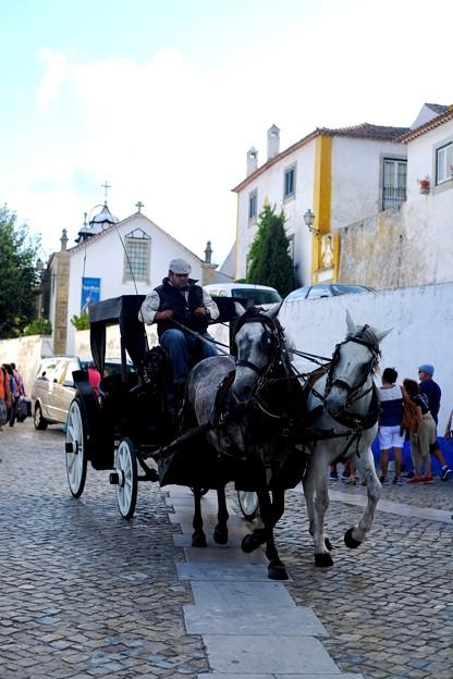馬車-Obidos, Portugal