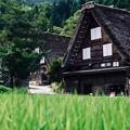 静かな散策-岐阜県白川村:白川郷