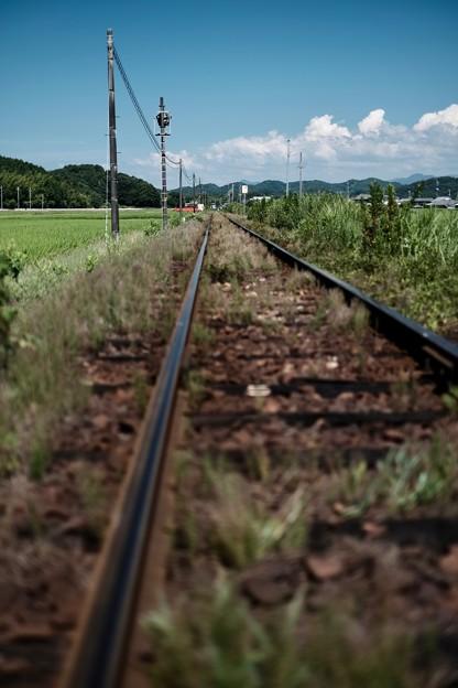 夏の鉄路-兵庫県加西市:北条鉄道 法華口駅