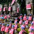 Photos: 人間の品格-奈良県御所市:九品寺
