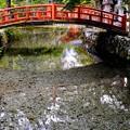Photos: 清冽な水が湧く寺-奈良県天川村:龍泉寺
