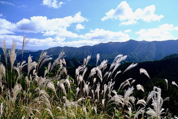この週末もキャンプへ-奈良県野迫川村