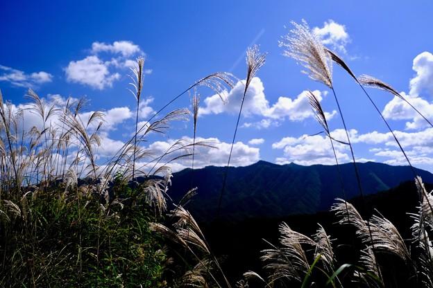 近畿の秘境-奈良県野迫川村
