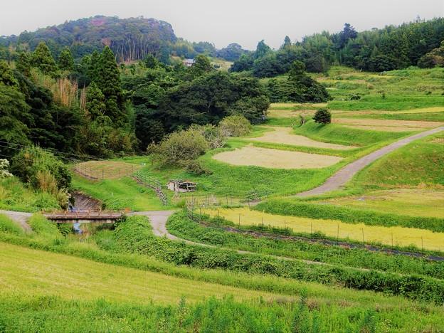 第3村の秋