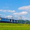 EF65 2065 宇都宮線配給列車