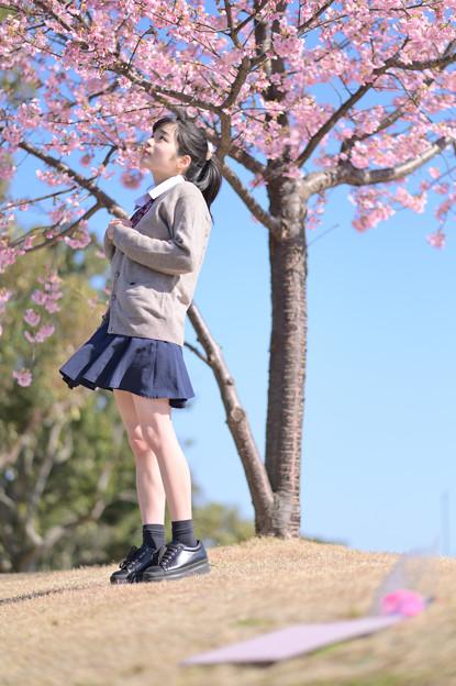 Photos: 春に想う