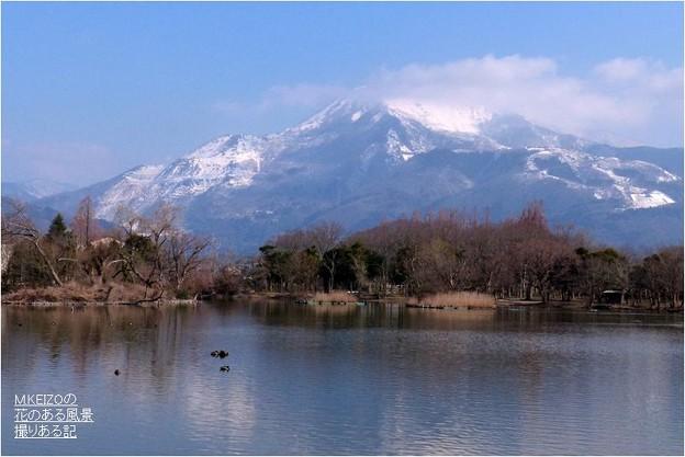 三島池 (2)