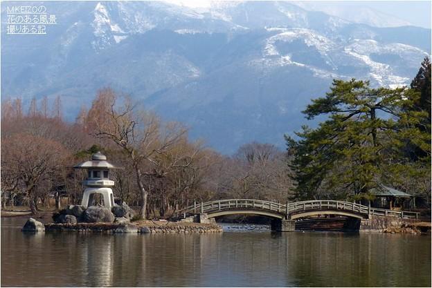三島池 (6)