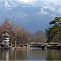 Photos: 三島池 (6)