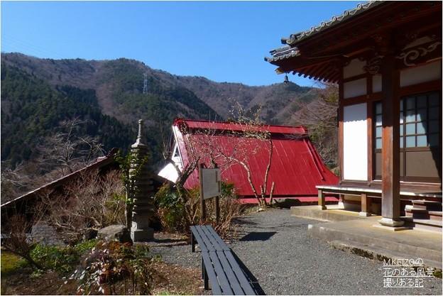 長尾護国寺 (7)
