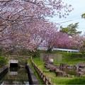 中央小公園付近 (3)