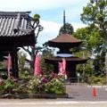 萬徳寺 (1)