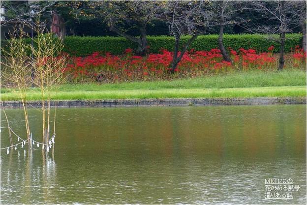 Photos: 天王川公園 (8)
