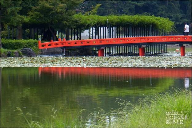 天王川公園 (9)