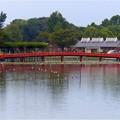 Photos: 天王川公園 (10)