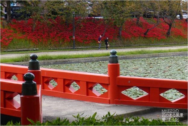 Photos: 天王川公園 (14)