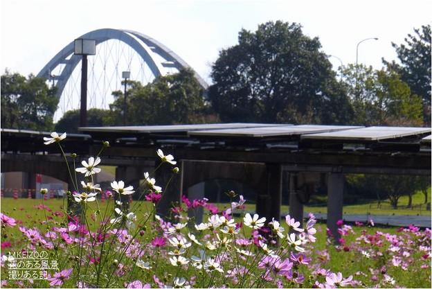 木曽三川公園センター (14)