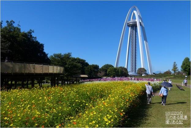 138タワーパーク (25)