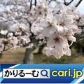 Photos: ジブリパーク 愛・地球博記念公園モリコロパークに開業予定