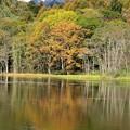 湖面に映る秋