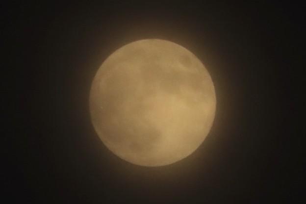 Photos: 今夜のお月さま~♪
