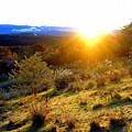 茶臼山山頂-1