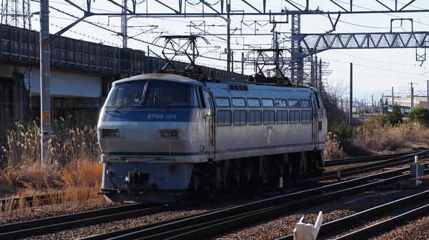 EF66 109