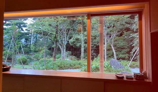 窓から太田道灌の庭を