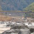 庄内川に架かる玉埜(たまの)橋 - 2:遠くから見た玉埜橋