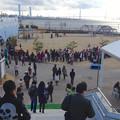 Photos: 名古屋港水族館ペンギンよちよちウォーク 2013年12月 No - 03:会場となる「しおかぜ広場」