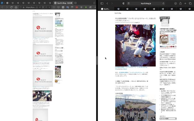 フォト蔵のブログ埋め込み写真がVivaldi等だと表示されず、Safariだと表示される