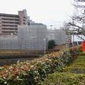 桃花台線の桃花台東駅解体撤去工事(2021年3月4日):残りの部分の撤去も開始 - 2