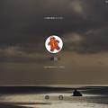 Photos: macOS Big Sur:ロック画面に「この画面は監視されています」と表示されビビった! - 1