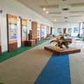 Photos: 愛知県森林公園 展示館 - 4:展示室