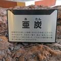 愛知県森林公園 展示館 - 6:展示されてる亜炭の説明