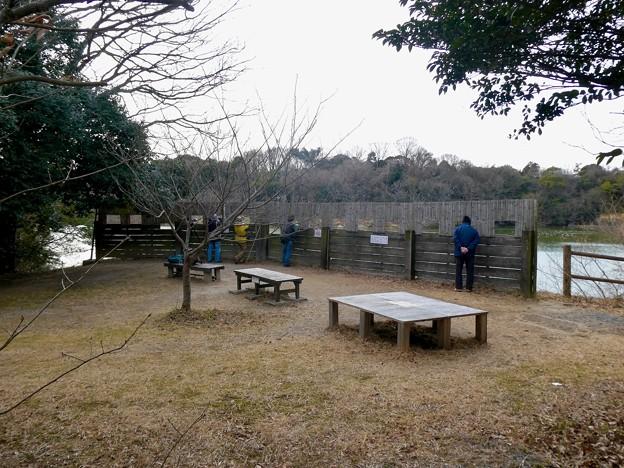 愛知県森林公園 植物園:岩本池北側の野鳥観察地 - 1