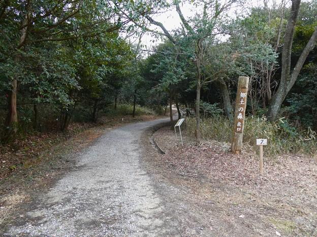 愛知県森林公園 植物園:郷土の森 北口