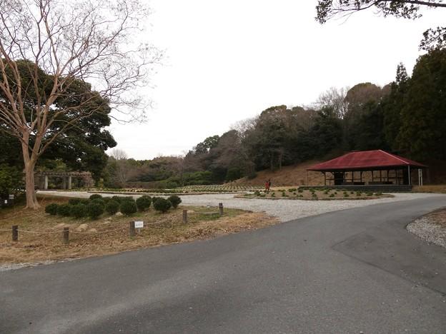 愛知県森林公園:見付園? - 1