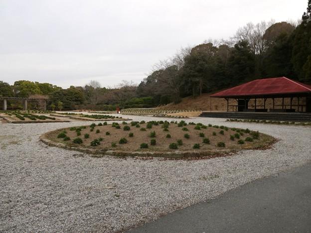 愛知県森林公園:見付園? - 2