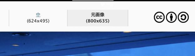 フォト蔵の写真が勝手に最大800pxに縮小されてる???? - 1