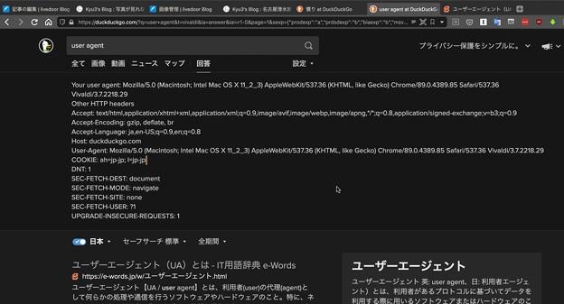 DuckDuckGoで「User Agent」で検索すると User Agent を表示!