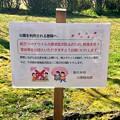 落合公園:コロナ感染拡大防止のため宴会等をしないよう要請