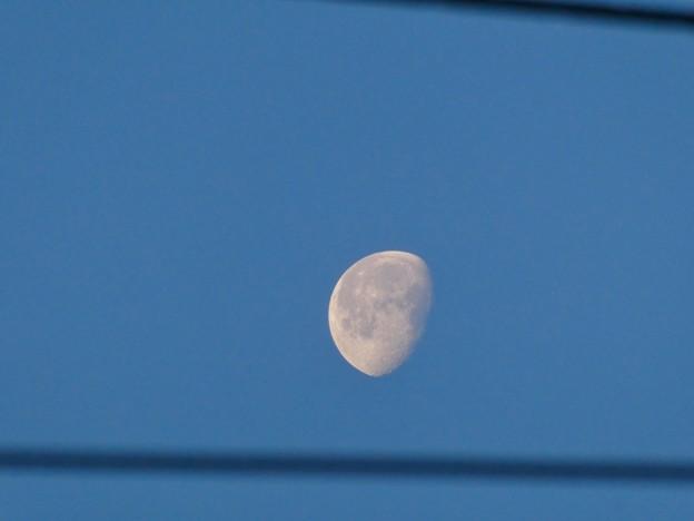 電線越しに見えた早朝に浮かぶ月