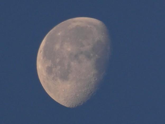 早朝に浮かぶ月 - 2