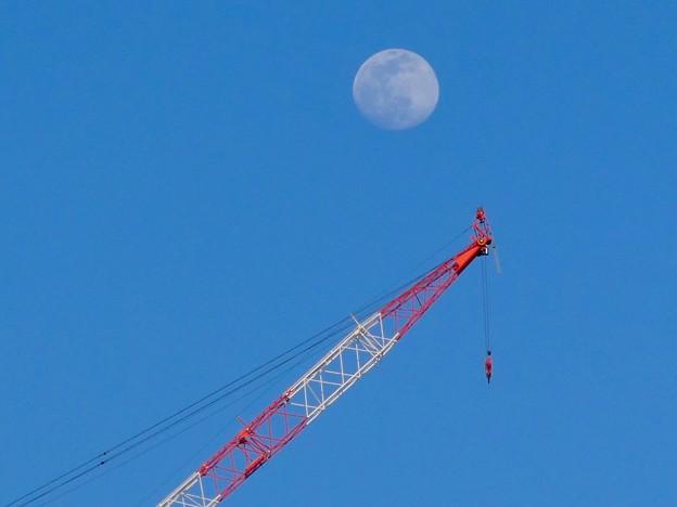 建設中のマンションのクレーンと上ったばかりの白い満月 - 1