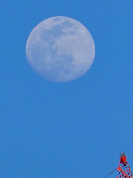 建設中のマンションのクレーンと上ったばかりの白い満月 - 4